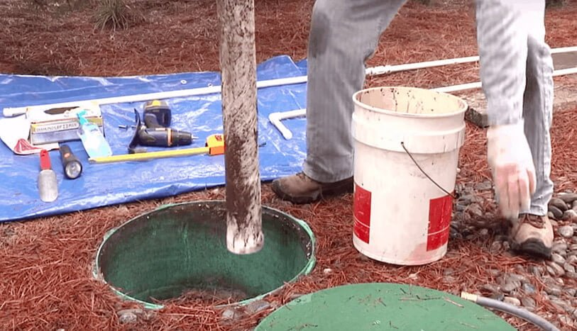 How Enzymes Can Help Your Septic System