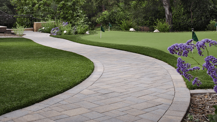 Best Weed Killer for Driveways