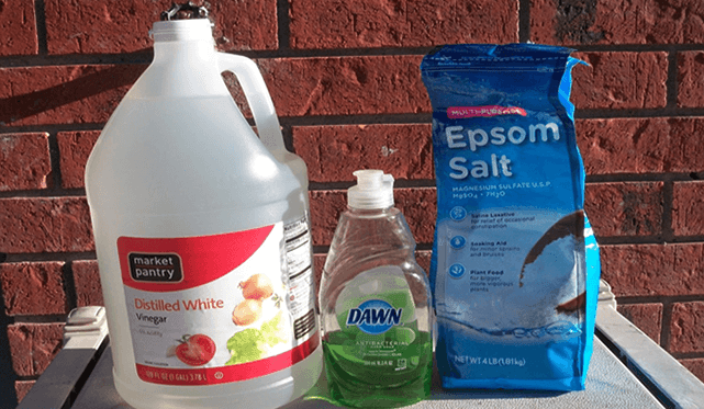 Weed Killer Using Vinegar Epsom Salt and Dawn
