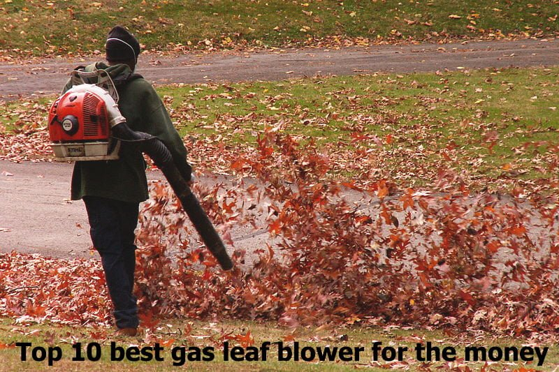 WHAT IS THE BEST GAS LEAF BLOWER FOR THE MONEY