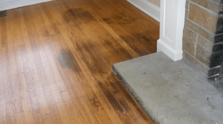 Dog Urine Soaked into Hardwood Floor