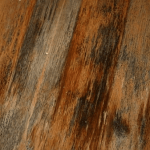 How to Remove Black Water Stains from Hardwood Floors