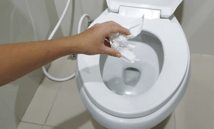 How to Unclog a Toilet with Bleach