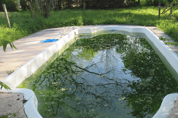 How to Clean a Pool That Has Been Sitting