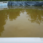 How to Get Brown Pool Water Clear