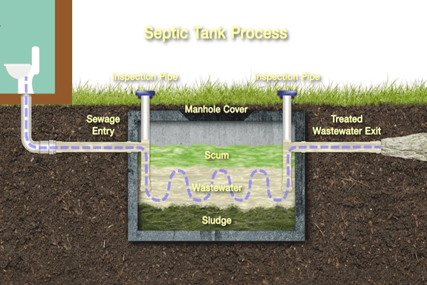 Homemade Septic Tank Treatment