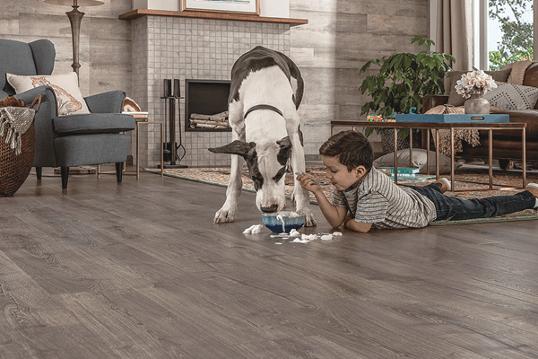 Waterproof Flooring for Pets